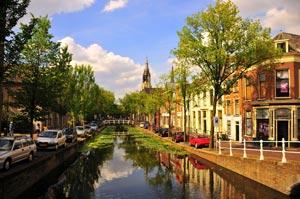 В Нидерландах нижняя палата парламента проголосовала за легализацию выращивания марихуаны